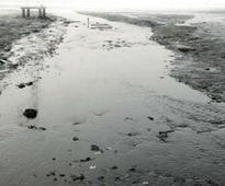 Nashikites walk an extra mile to save river