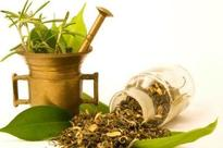 Greater encouragement for research in naturopathy, says AYUSH min official