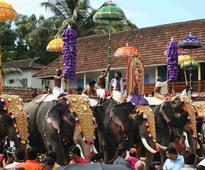 Elephants will be paraded at shrine: Temple body