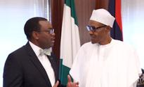 Nigeria: Adesina Stresses Need for Nigeria to Incentivize its Way Out of Recession(African Development Bank)