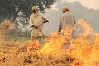 How farmers of Punjab, Haryana can avoid stubble burning