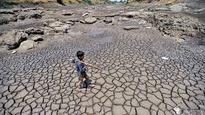 Konkan will soon be next Vidarbha, warns documentary