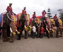 Dasara elephants received with honours at Mysuru palace