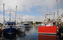 Newfoundland Fishermen Withdraws Appeal Challenging Federal Owner-Operator Policy
