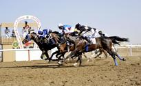 Horse Racing: RHRC to organise Omani Derby and Sheikha Fatima Cup on Friday