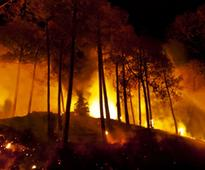 Uttarakhand forest fires: Centre d..