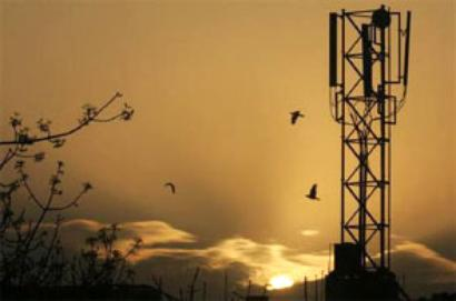 Crossholding in same telecom circle may go