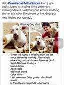 OMG! Devoleena Bhattacharjee accuses co-star Utkarsha Naik of stealing her pet dog!