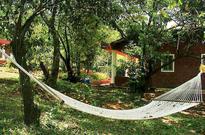 Travel: 5 ideal homestays at popular getaways in Konkan