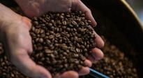 Committee to coordinate coffee reforms gazetted