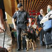 Bomb Dogs Failed 52 Tests at 10 Big U.S. Airports