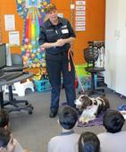 Dog safety education vital
