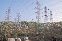 Delhi discoms can't recover costs, seek govt help