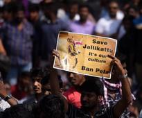 Jallikattu protests: Tamil Nadu comes to a standstill