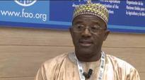 Agric Ministry blames cassava shortage on poor transport system