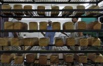 India bans use of carcinogenic food additive potasium bromate in bread