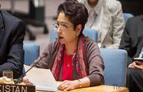 UN efforts insufficient to ease Israel-Palestinian tension: ...