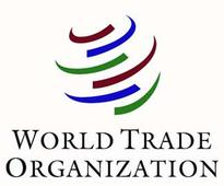 India complains to WTO against US on renewable energy