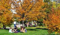 University of Regina 411: Where to find the best cheap lunch and more