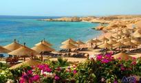 British-Egyptian Friendship association seeks lifting travel ban…