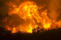 California deadly wildfires: 17 dead, 2000 buildings destroyed