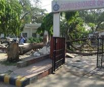 Tree falls at police commissioner's office, ...