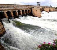 Cauvery: SC directs Karnataka to release 2000 cusecs of water per day to TN