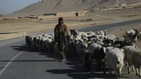 Newly Paved Road Smoothens Access for Local Population in Kandahar Province