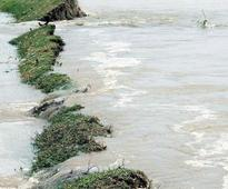 Ken-Betwa river linking project gets Wildlife Board clearance