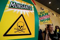 EU starts in-depth probe of Bayer, Monsanto deal