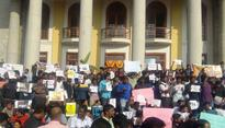 Jallikattu protests win: Tamil Nadu governor promulgates ordinance reinstating the bull-taming sport