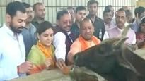 WATCH: UP CM Yogi Adityanath visits cow shelter run by Aparna and Prateek Yadav in Lucknow