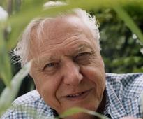 Nature under serious threat, says legendary Attenborough