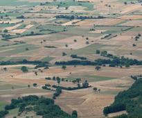 Guidance and tool to support farmers in making informed decisions on Ecological Focus Areas - Mon, 25/01/2016 - 14:11
