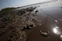 BP Has Dropped Its Fight to Pay $1 Billion in Gulf Oil Spill Damages