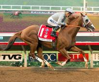 Chrome Preps for Pegasus in Style