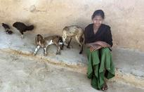 Teenager feeds family in Rajasthan