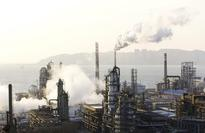 China's crude oil output will fall 7 percent by 2020 - govt