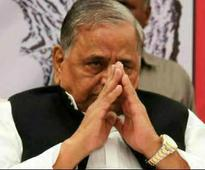 With trees, Mulayam plants word on SP achievements