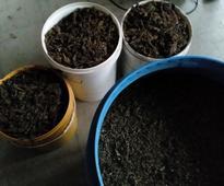 R60 000 drug bust at Watersmeet