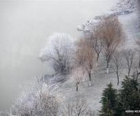 In pics: Amazing frost scenery in east China