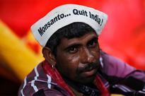 Monsanto meets its match as Hindu nationalists assert power in India