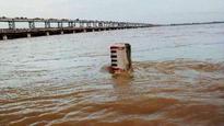 Reduced Mahanadi flow may hit Chilika species
