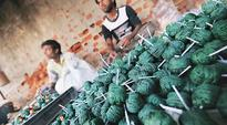 Delhi firecracker ban: Plea in Supreme Court filed by 3 toddlers