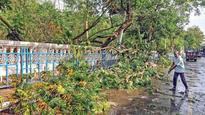 Twin storms claim 18 lives in West Bengal