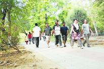 Zoo strolls still on despite ban