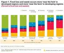 Tesco and Others Lend a Helping Hand to Fight Food Waste