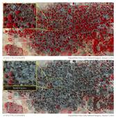 Boko Haram accused of crime against humanity as massacre images emerge