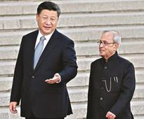 China willing to work with India in UN on fighting terror: Prez