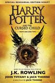 Harry Potter mania grips city bookworms